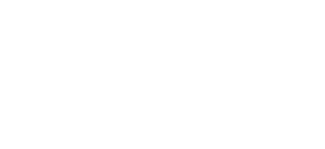 AGM Consulting kontra
